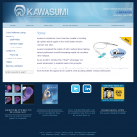 The homepage of kawasumiameric.com