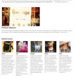 ReeFuge Homepage